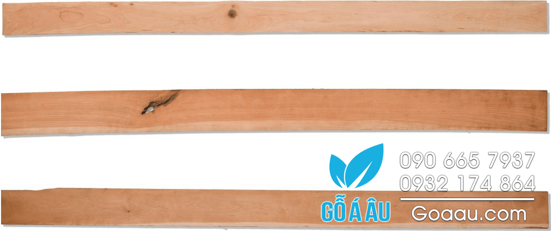 go-thich-cung-hard-maple-chat-luong-1c-300x47
