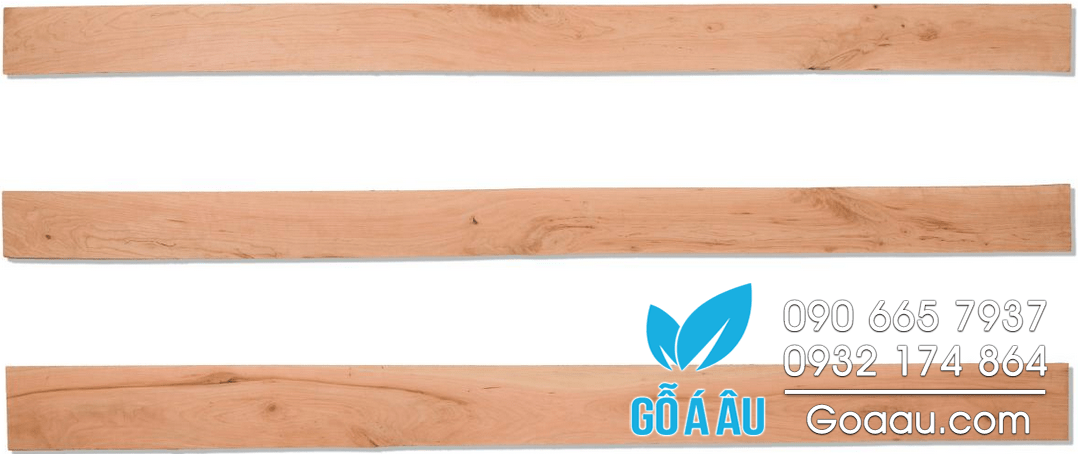 go-thich-cung-hard-maple-chat-luong-2c-300x47