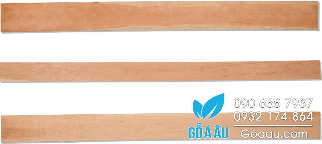 go-thich-cung-hard-maple-chat-luong-fas-300x47
