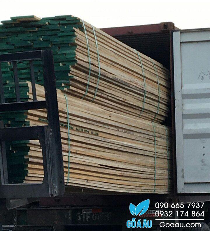 gỗ tần bì có tốt không