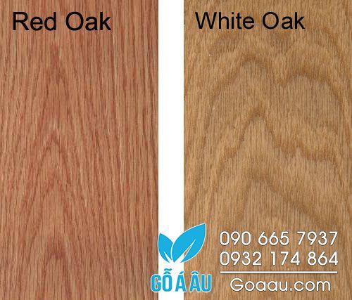 Phân biệt gỗ sồi đỏ và gỗ sồi trắng