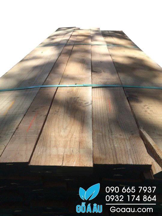 gỗ sồi đỏ red oak