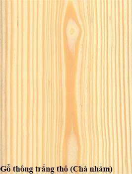Gỗ thông trắng (white pine)