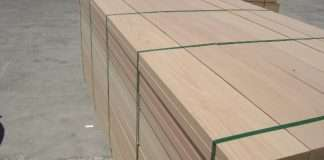 gỗ beech
