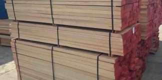 gỗ beech giá rẻ