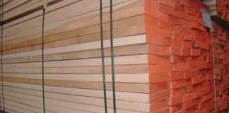 gỗ beech là gỗ gì