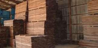 gỗ óc chó có bền không