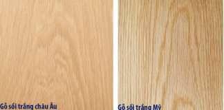 khác biệt giữa gỗ sồi trắng Mỹ và gỗ sồi trắng Châu Âu
