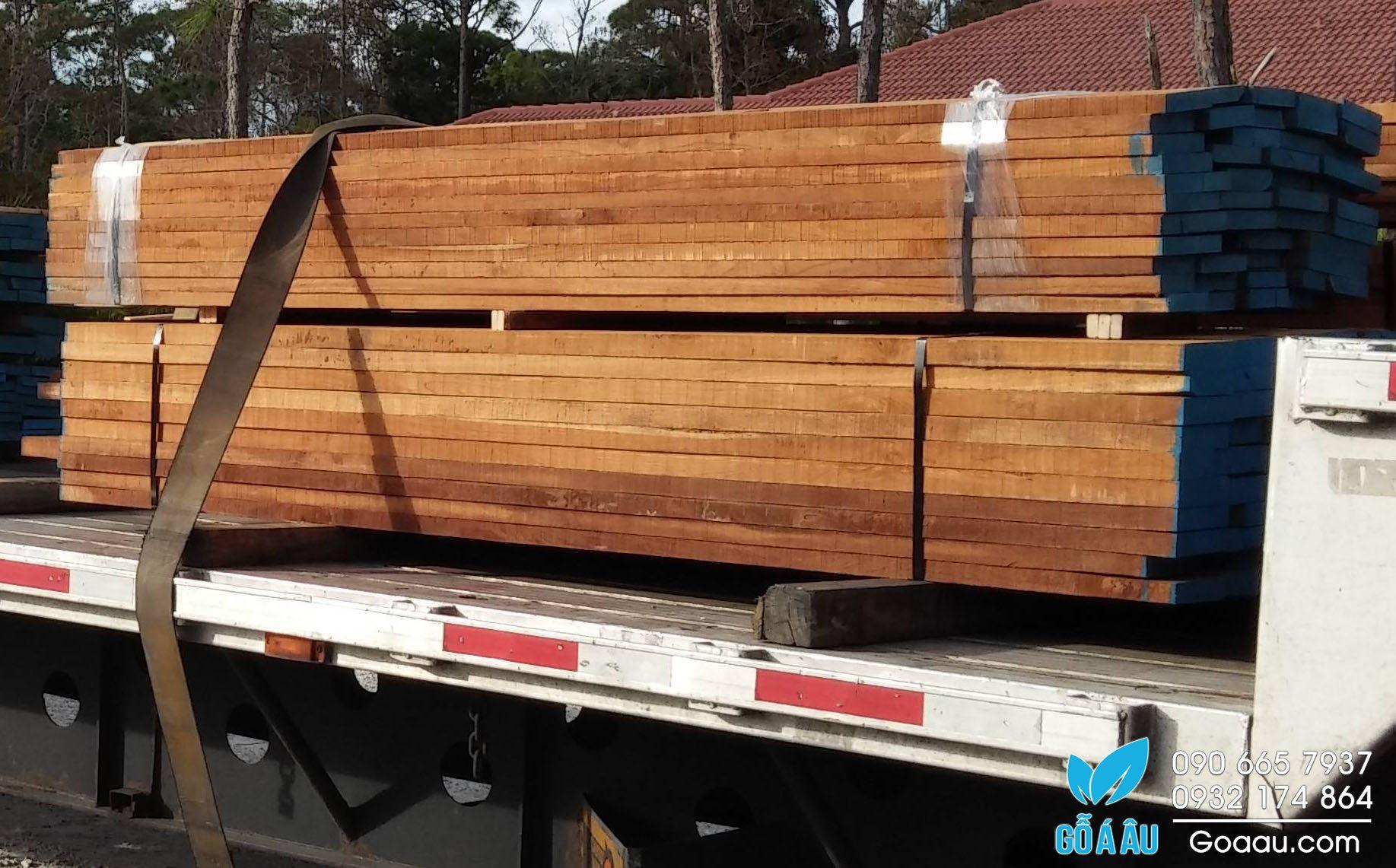bán gỗ giá tỵ
