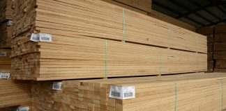 cần mua gỗ thông