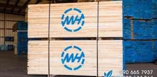 gỗ anh đào giá rẻ