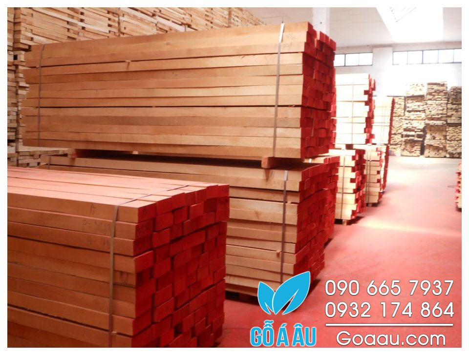 gỗ dẻ gai giá rẻ