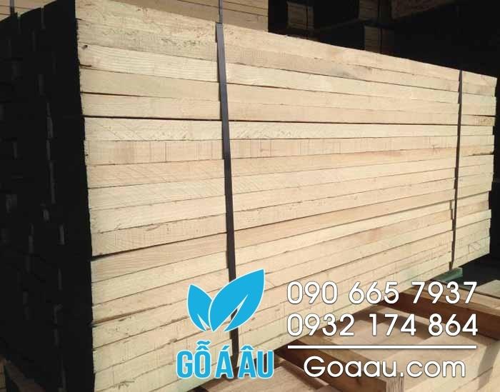gỗ bạch dương nguyên liệu