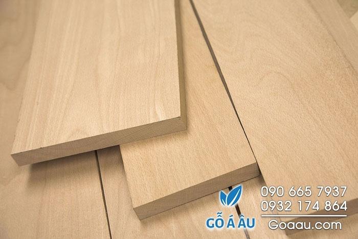gỗ beech nguyên liệu