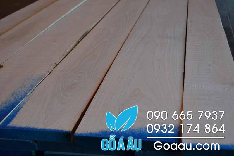 gỗ soft maple nguyên liệu