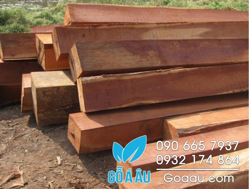 gỗ tự nhiên là gỗ gì