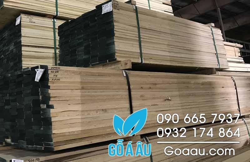 gỗ yellow poplar nguyên liệu