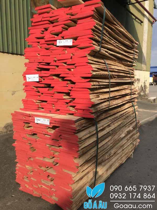 Bảng giá gỗ Tần Bì - Loại chưa rong bìa